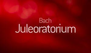 Bach Juleoratorium med Københavns Kantatekor
